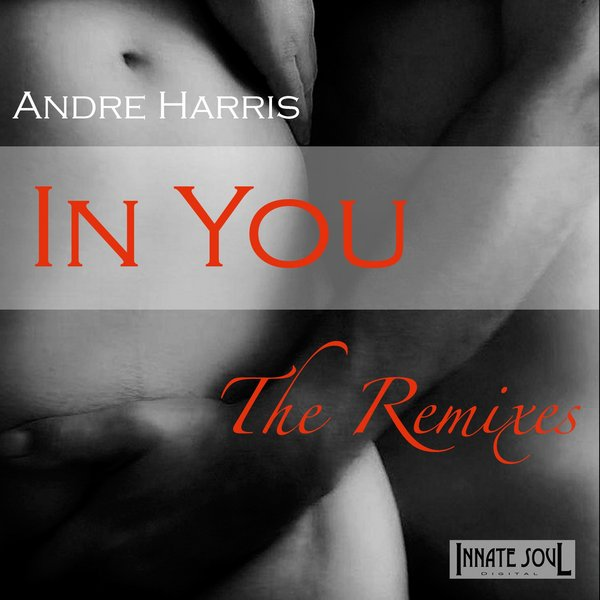 In You (the Remixes)